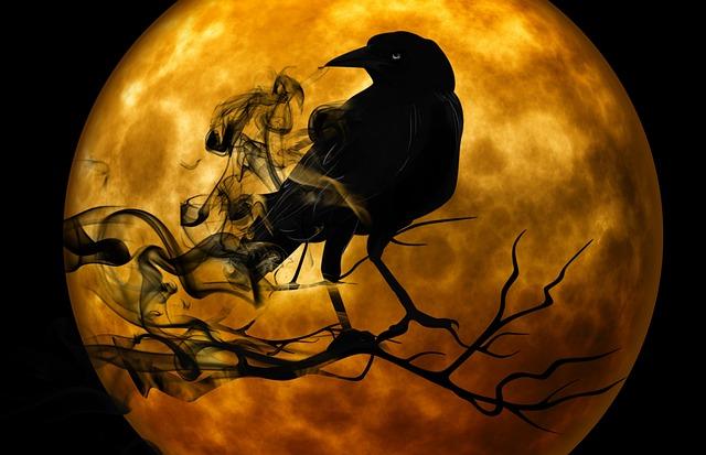 raven-988218_640