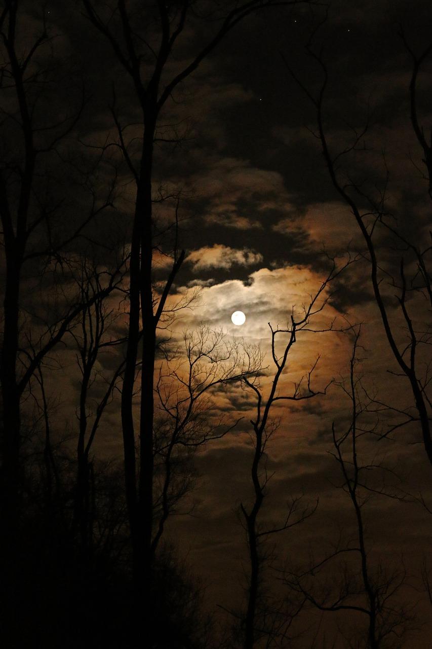 full-moon-1372783_1280